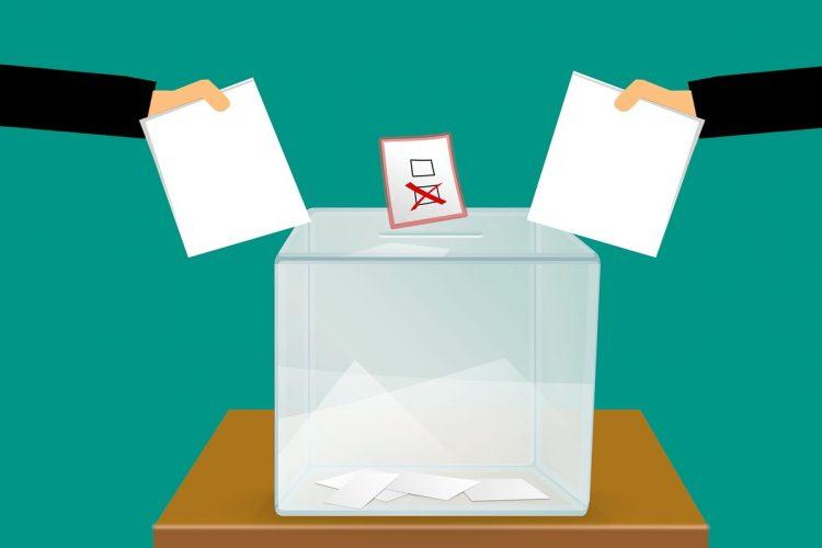 Poznanski Budzet Obywatelski PBO 2019 głosowanie głos wybory