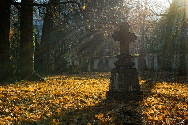 Poznań wszystkich świętych 1 listopada