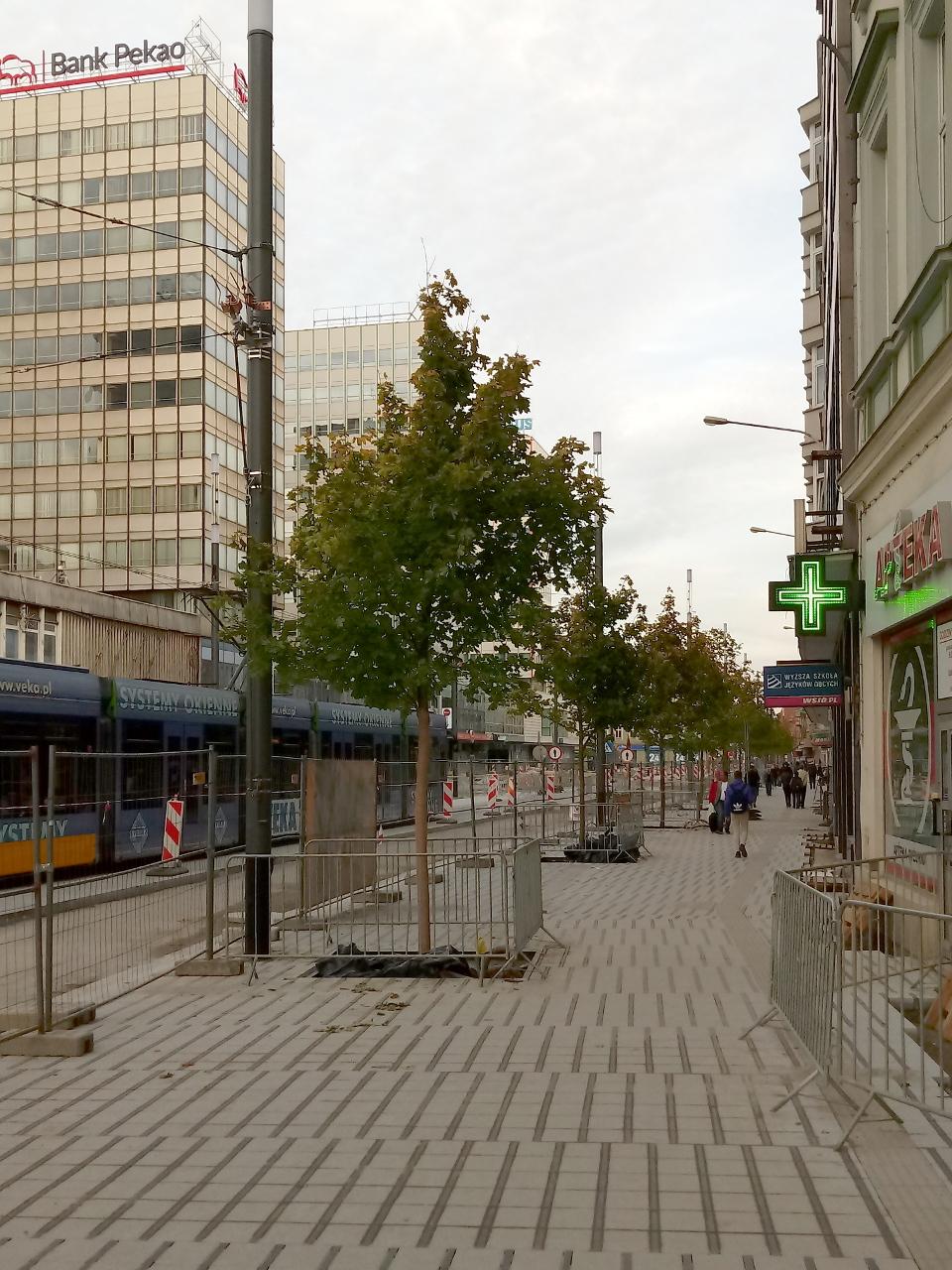 Poznań Święty Marcin fotorelacja zdjęcia drzewa Projekt Centrum 10