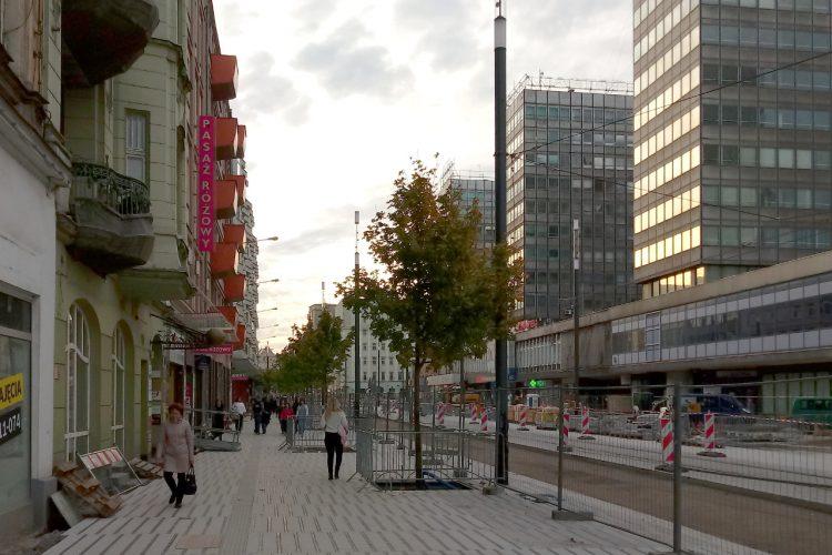 Poznań Święty Marcin fotorelacja zdjęcia drzewa Projekt Centrum 11