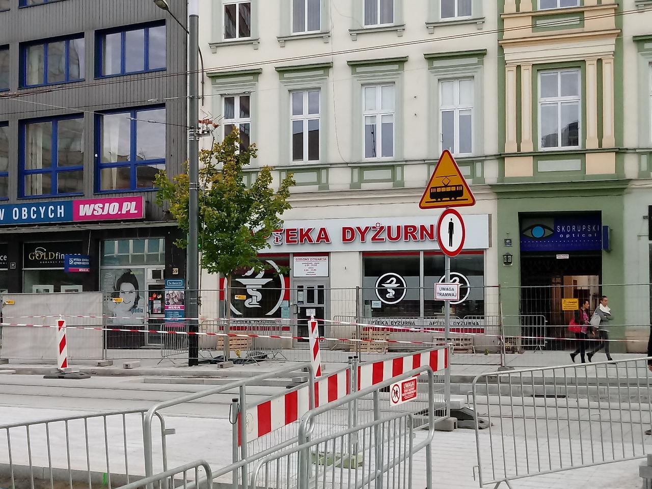 Poznań Święty Marcin fotorelacja zdjęcia drzewa Projekt Centrum 6