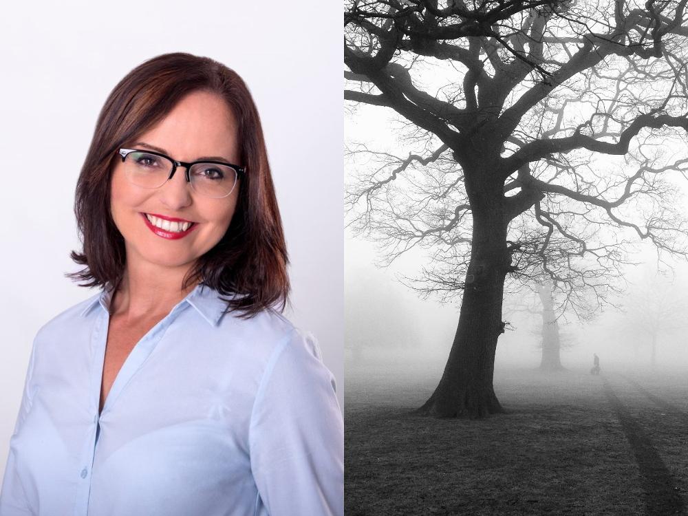 Radna podnosi larum na Facebooku w sprawie legalnej wycinki drzewa
