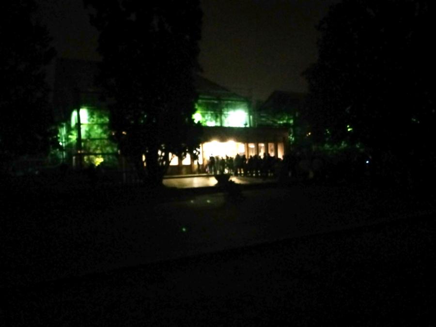Park Wilsona Palmiarnia Poznań ciemno latarnie