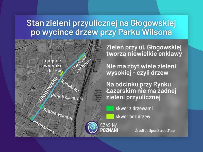 Poznań stan zieleni na Głogowskiej po wycince