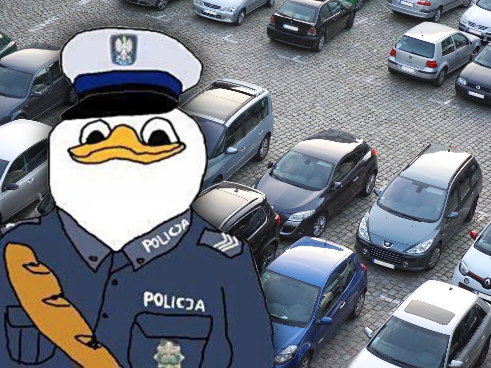 Poznań afera parkingowa wyrok parking ZDM ZRD Policja