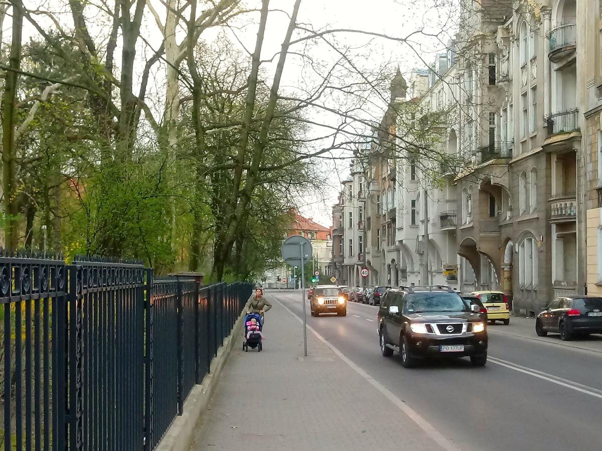Czy drzewa przy ulicy Matejki czeka wycinka? [AKTUALIZACJA]