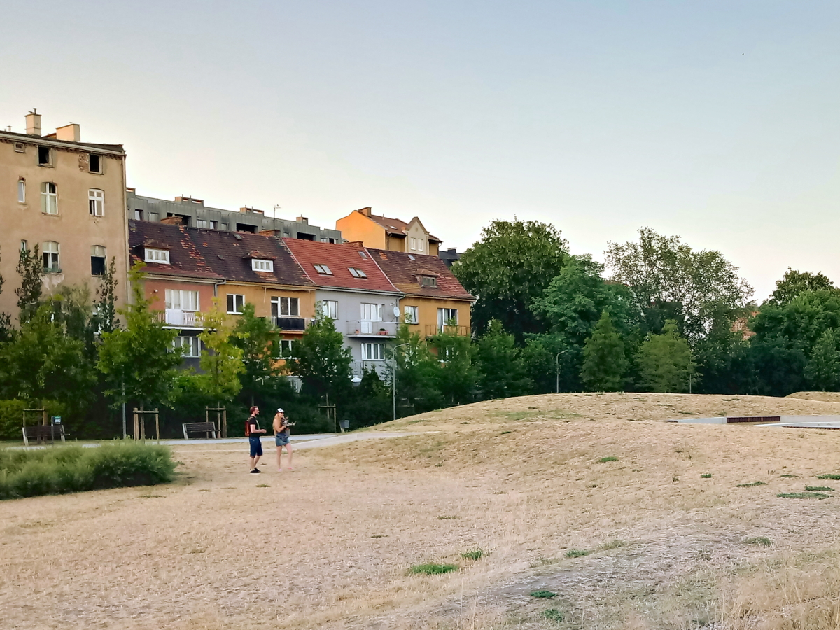 Susza w Poznaniu: rekordowo suchy czerwiec i żółta trawa