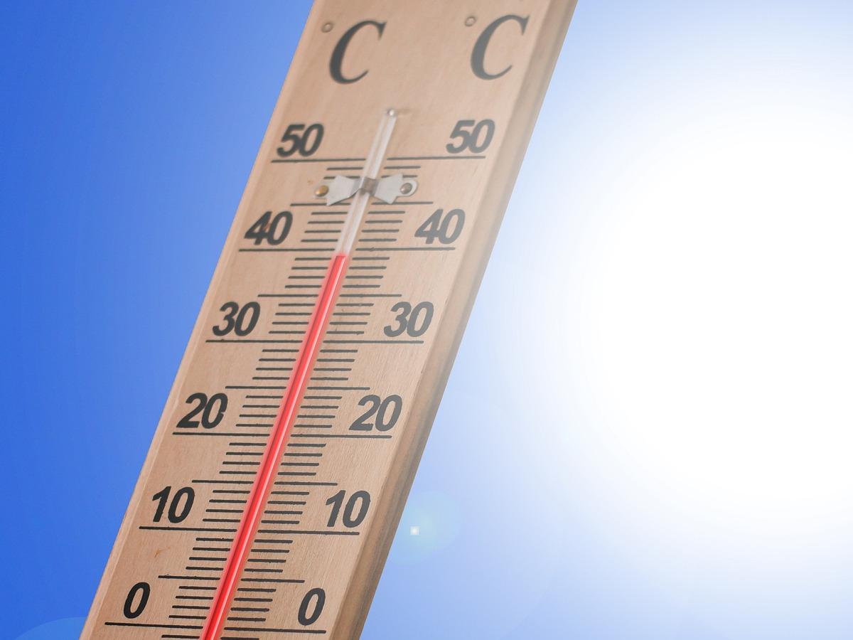 Zmiany klimatu w Poznaniu: 3 razy więcej dni upalnych od lat 50. XX wieku