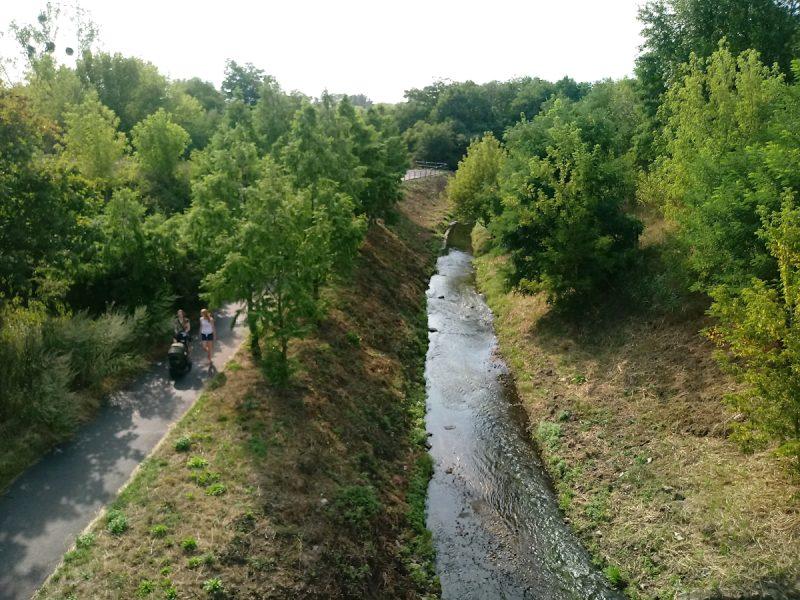 Nie wszystkie dopływy Warty wysychają - Główna (zdjęcie wykonane z mostu w ciągu ulicy Hlonda) płynie dosyć żwawo