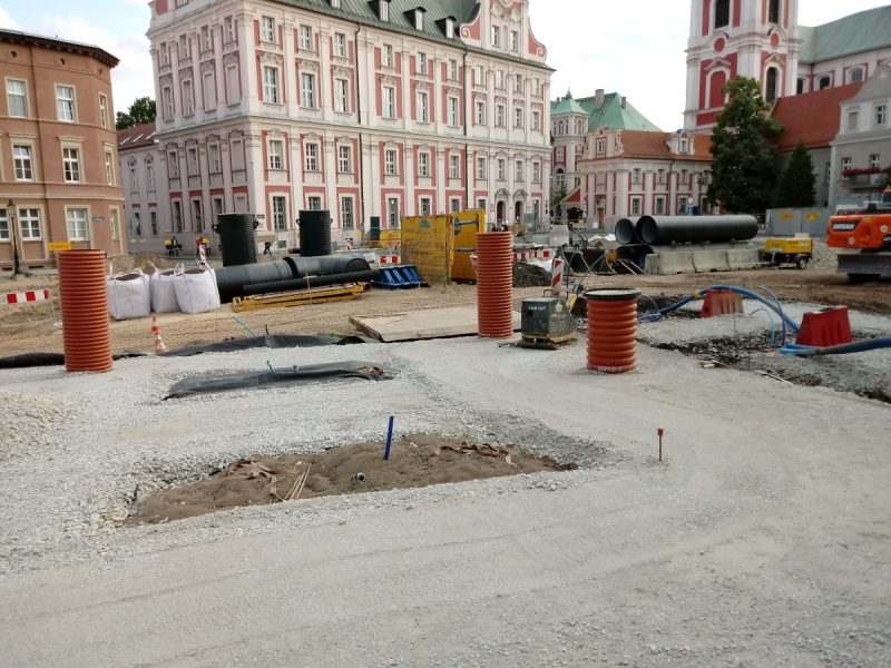 Drzewa na nowym Placu Kolegiackim - lipiec 2019, Poznań