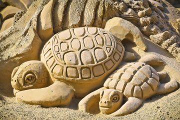 Poznań Sand Festival: festiwal rzeźby piaskowej na Termach Maltańskich