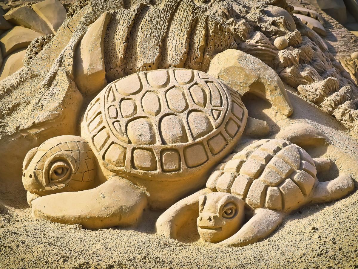 Poznań Sand Festival: festiwal rzeźb piaskowych startuje 15 lipca