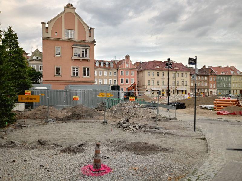 Poznań koziołki rzeźba Plac Kolegiacki przebudowa