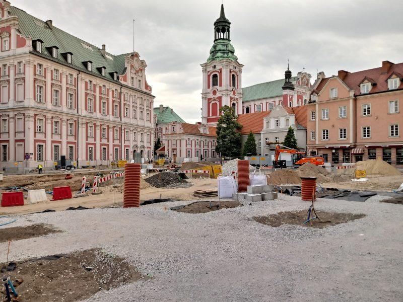 Podbudowa i miejsca na drzewa - odnowa Plac Kolegiacki w Poznaniu