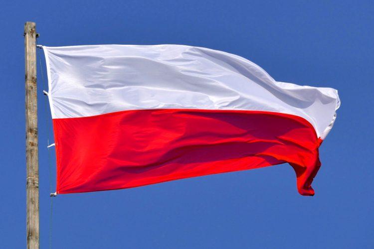 Wybory parlamentarne 2019: Poznań. Jak dopisać się do spisu wyborców? Flaga Polski. Lista kandydatów