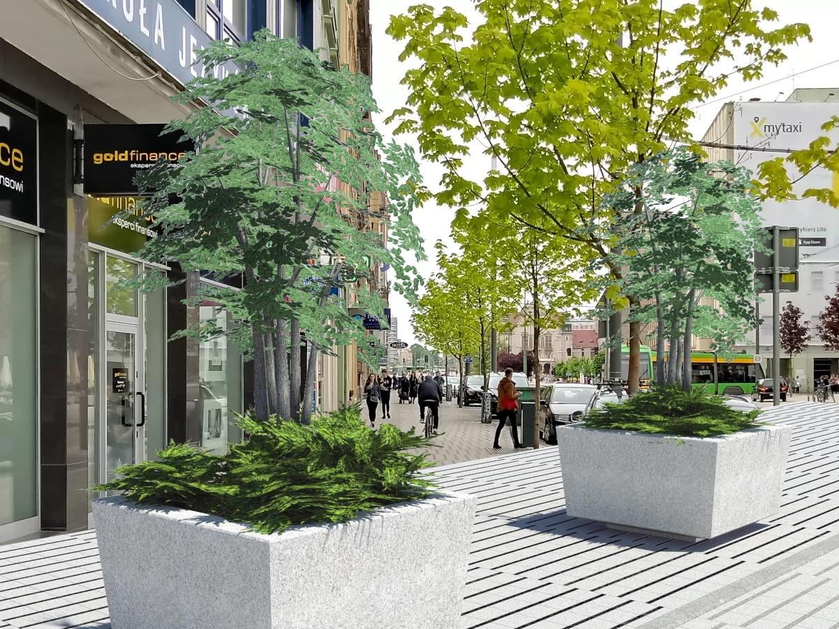36 donic wkrótce zazieleni centrum Poznania! Zobacz, gdzie pojawią się rośliny