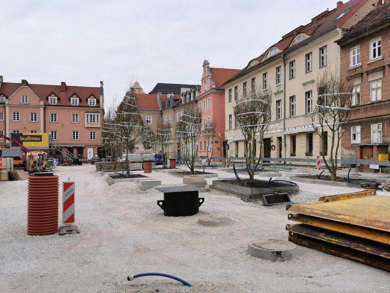 Przy świeżo posadzonych platanach pojawiło się sporo podbudowy