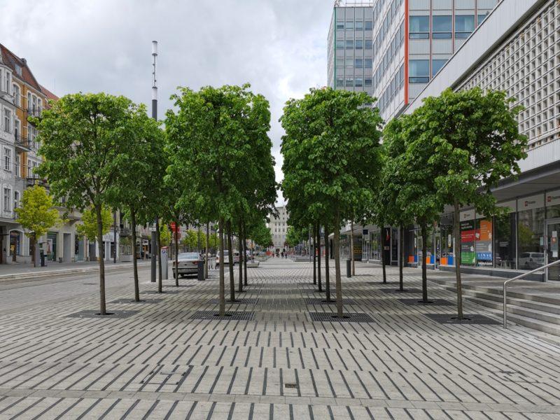 Boskiety (drzewa przycięte po bokach) w narożniku Święty Marcin / Ratajczaka
