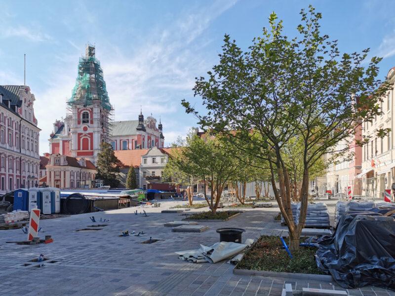 Centralna część placu Kolegiackiego: przybywa kostki