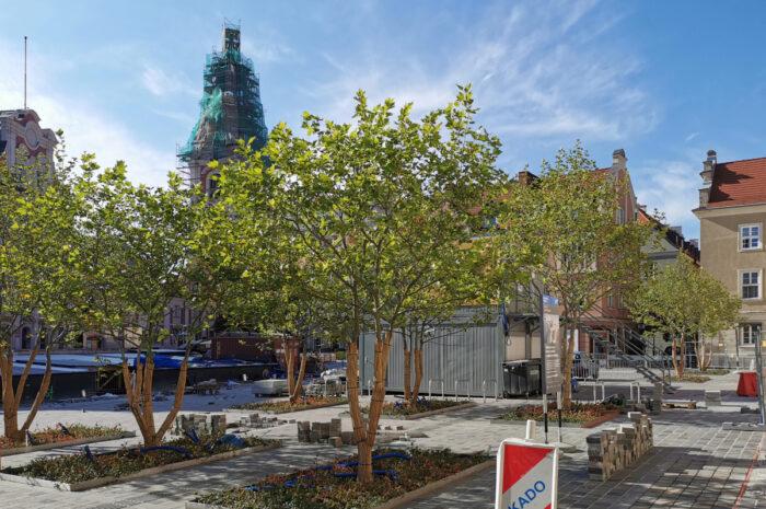 Węższy zakres przebudowy placu Kolegiackiego. Bez skweru pod przychodnią [AKTUALIZACJA]