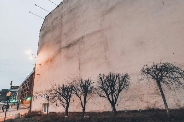 Reklamy na Estkowskiego (nad przyciętymi drzewami) przez lata wisiały nielegalnie