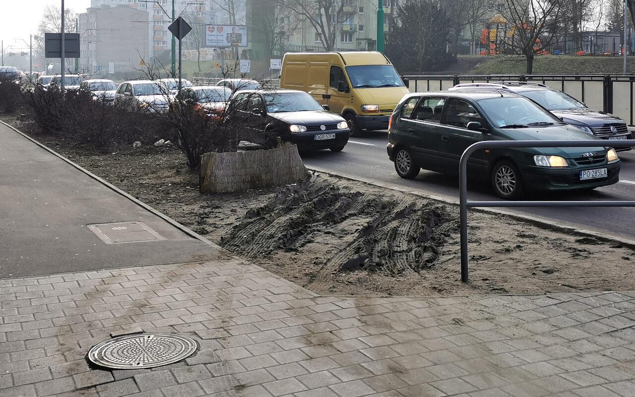 Rozjeżdżony pas zieleni przy ulicy Hetmańskiej (Łazarz)