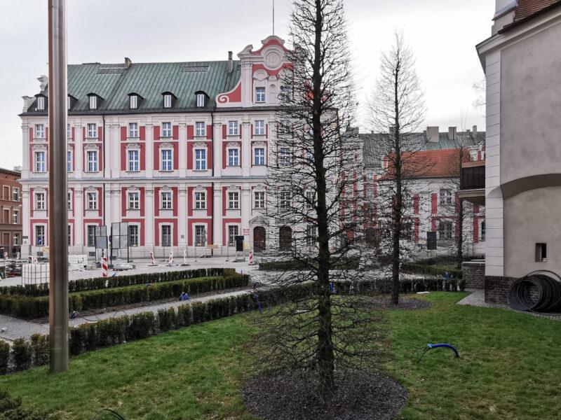 Na skwerze z koziołkami bez zmian od grudnia. Ale tym razem oglądamy go nie od strony placu Kolegiackiego ;) Poznań Stare Miasto